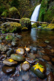 Wahclella Falls Stock Photography