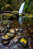 Wahclella Falls. A fall day at Wahclella Falls Stock Photography