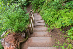 Wahclella Falls Wooden Stairs Stock Images