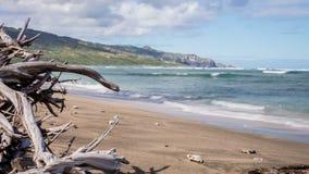 Wahee  Beach Park, Maui  Hawaii Time Lapse Video stock footage