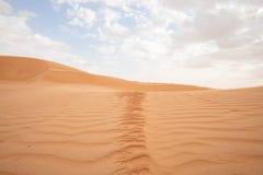 Wahiba lixa o deserto em Omã fotografia de stock
