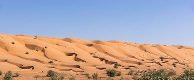 Wahiba lixa o deserto - Omã imagem de stock