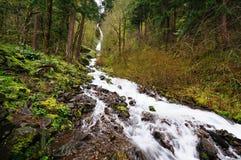 哥伦比亚落峡谷俄勒冈河wahkeena 库存图片