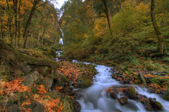 Wahkeena cade in autunno fotografie stock libere da diritti