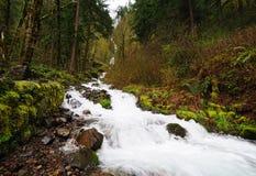 Wahkeena cai no desfiladeiro do rio de Colômbia Imagens de Stock