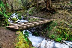 Wahkeena Creek in the Columbia River Gorge, USA royalty free stock photo