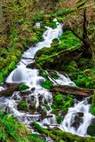 Wahkeena Creek in the Columbia River Gorge, USA royalty free stock photos