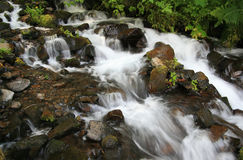 Wahkeena Falls Stock Photography