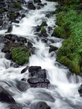 Wahkeena Falls. In the Columbia River Gorge, OR Royalty Free Stock Photography