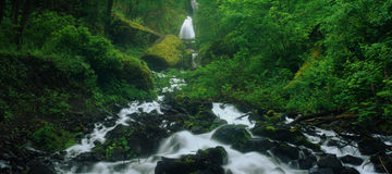 Wahkeena Falls Royalty Free Stock Images