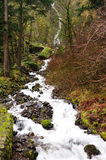 Wahkeena falls Royalty Free Stock Photo