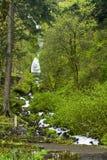 Wahkeena Falls Stock Image
