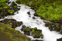 Wahkeena Falls Stock Photos