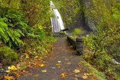 Wahkeena Falls Oregon and foot path royalty free stock photo