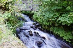Wahkeena Waterfall Oregon Royalty Free Stock Photos