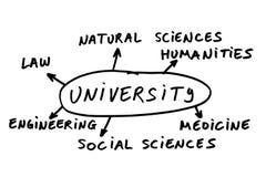 Wahl der Studie lizenzfreie abbildung