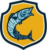 Wahoo Fish Jumping Shield Retro Royalty Free Stock Photos