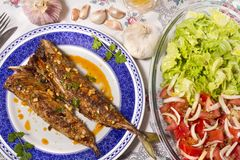 Wahoo grilled fish meal Royalty Free Stock Images
