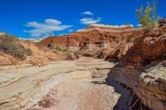 Wahweap hoodoo's trail near Page, Arizona, USA Stock Images
