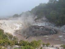 Wai-O-Tapu热量公园,新西兰 库存照片