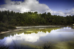 Wai-O-Tapu Photo stock