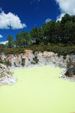 Wai-O-Tapu geothermal area Stock Photography