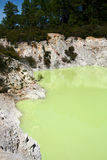 Wai-O-Tapu,New Zealand Royalty Free Stock Photography