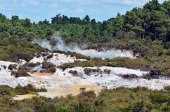 Wai-O-Tapu, Rotorua, New Zealand. Landscape of Wai-O-Tapu Geothermal Wonderland, Rotorua, New Zealand Royalty Free Stock Photos