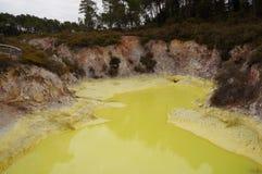 Wai-O-Tapu termisk underland i Nya Zeeland royaltyfri foto