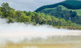 Wai-O-Tapu Thermal Wonderland. Which is located in Rotorua, New Zealand royalty free stock photos
