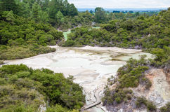 Wai-O-Tapu Thermal Wonderland. Which is located in Rotorua, New Zealand stock image