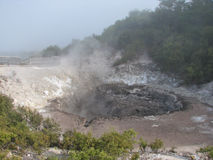 Wai-o-Tapu thermisch park, Nieuw Zeeland stock foto's