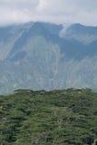 Waialeale-Gebirgszug lizenzfreies stockbild