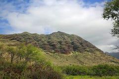 Waianae大农场 库存照片