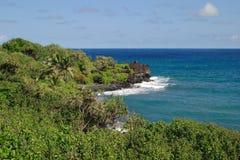 Waianapanapa Coastline Stock Image