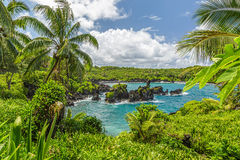 Waianapanapa Royalty Free Stock Images