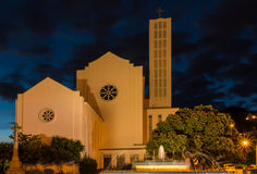 Waiapu Cathedral Royalty Free Stock Photo