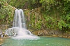 Waiau Falls. Beautiful Waiau Falls in a lush green rainforest setting, Coromandel Peninsula, New Zealand Royalty Free Stock Photos