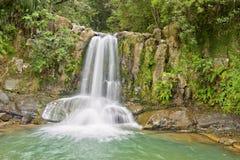 Waiau Falls. Coromandel Peninsula, North Island, New Zealand Royalty Free Stock Photo