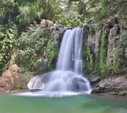 Waiau Falls (New Zealand) Royalty Free Stock Images