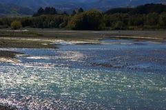 Waiau Fluss II Stockfotografie