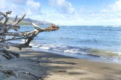 Waihee Beach Park Stock Image