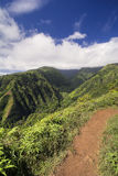 Waihee Ridge Trail, looking up the valley to the West Maui Mountains, Hawaii. View from Waihee Ridge Trail, looking up the valley to the West Maui Mountains royalty free stock photography
