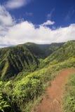 Waihee Ridge Trail som upp ser dalen till de västra Maui bergen, Hawaii Royaltyfri Fotografi