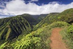 Waihee Ridge Trail som upp ser dalen till de västra Maui bergen, Hawaii Arkivbild