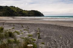 Waihi Beach, Bay of Plenty. New Zealand. Waihi Beach is a beautiful 9km-long authentic kiwi sandy beach known for its surfing is located in the Bay of Plenty on stock photography
