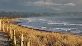 Waihi Beach in morning sun stock video