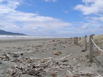 Waikanae strand nära Wellington New Zealand Arkivfoto