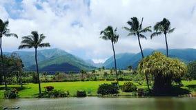 Waikapu-Tal-Ansicht Stockfoto