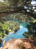 Waikato flod Fotografering för Bildbyråer